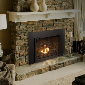 Pacific Energy Tofino Gas Burning Fireplace Insert
